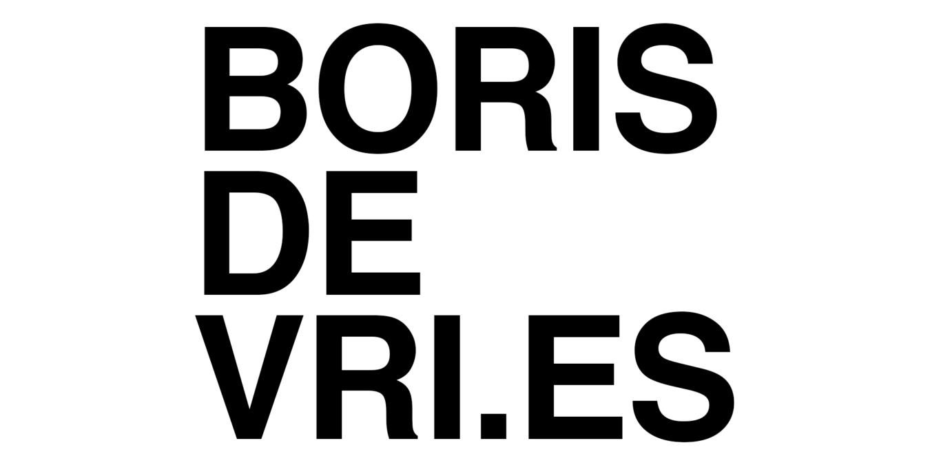 logo_borisdevries